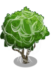 Starfruit3-icon