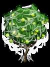 Guava4-icon