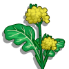 Mustard-icon.png