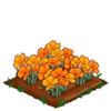 Golden Poppy extra100.png