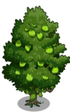 Singapore Jackfruit Tree2-icon