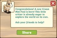 Cream mini foal message