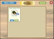 Giant Cocoa Tree in Gift Box
