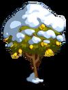 Lemon8-icon
