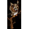 Long Eared Owl-icon