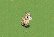 Cream Mini Foal