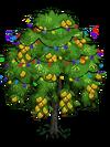 Indian Laurel Tree6-icon