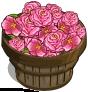 Begonia Bushel-icon