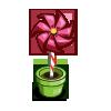 Rose Pinwheel-icon