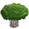 Banyan Tree (decoration)-icon.png