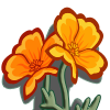 Golden Poppy-icon.png