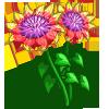 Blanket Flower-icon
