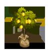 Lemon Sapling-icon