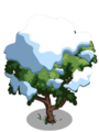 Amherstia Tree7-icon.png