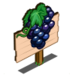 Cabernet Sauvignon Mastery Sign-icon