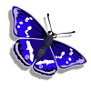 Emperor Butterfly-icon