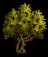 Olive2-icon