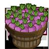 Turnip Bushel-icon