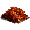 Red Maple Leaves-icon