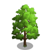 American Linden Tree-icon