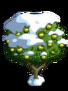 Granny Smith Apple Tree8-icon