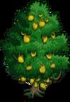 Jackfruit Tree2-icon