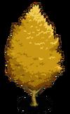 Autumn Ginkgo Tree1-icon