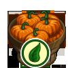Organic Pumpkin Bushel-icon