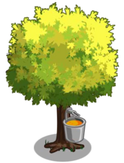 Silver Maple2-icon