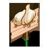 White Garlic Mastery Sign-icon
