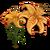 Tiger Lily-icon