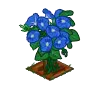 Perfect Morning Glory-icon.png