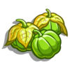 Bright Tomatillo-icon