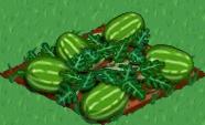 Plik:Watermelon 100.png