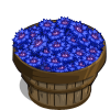 Cornflower Bushel-icon