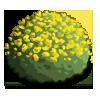 Yellow Dome-icon