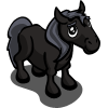 Black Pony Foal-icon