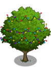 Asian Pear Tree5-icon