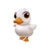Baby American Pekin Duck