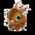 Baby Flemish Giant Rabbit.png