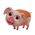 Baby Hereford Pig.png
