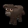 Baby Dexter Cow
