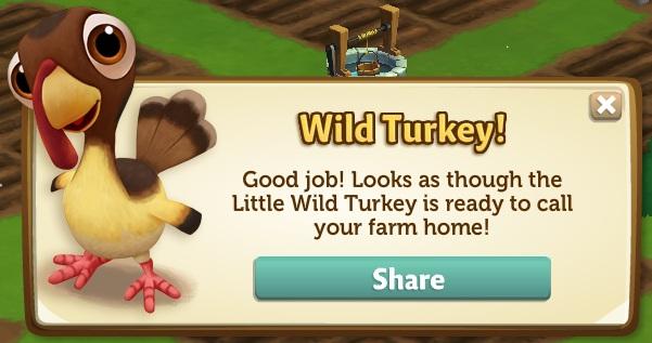 Wild Turkey reward from Thanksgiving event 2012