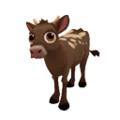 Baby Longhorn Cow.png