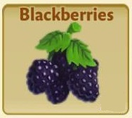 File:Blackberries.jpg