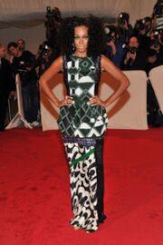 Solange Knowles- Dries Van Noten red carpet jhh ph -j -p-0