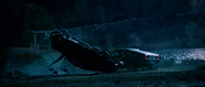 Z33 Wreck & Mustang Fastback