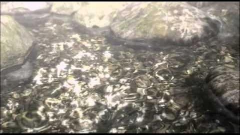 Zero Shinku no Chou l Fatal Frame Deep Crimson Butterfly Trailer
