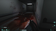 Massacred SFOD-D soldiers in the Hospital