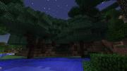Darkwoodtrees